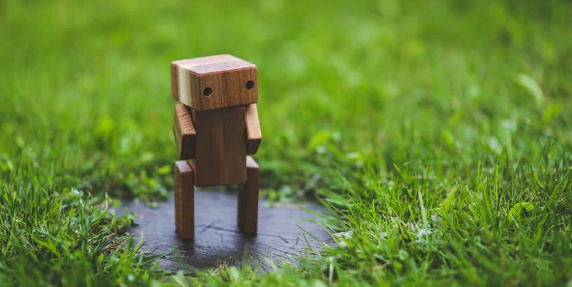 Little robot standing in the grass