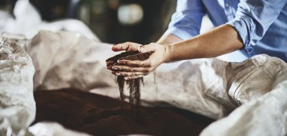 hands holding dried coffee waste